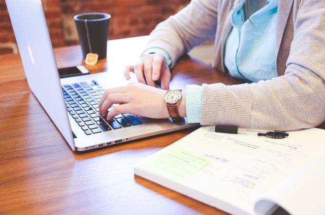 «Цифровое государство»: минцифры представили портал цифровых услуг