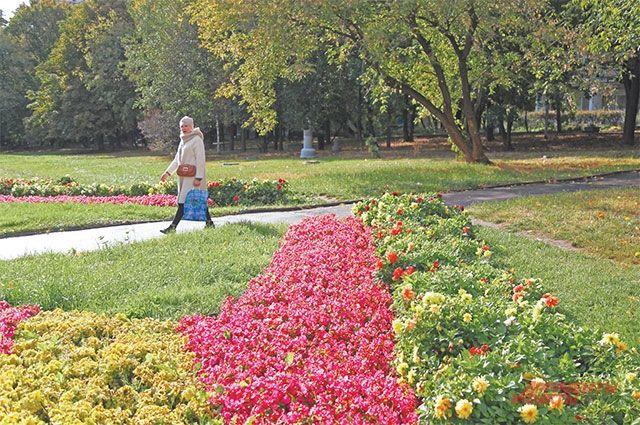В следующем году в Парке 50-летия Октября цветов будет ещё больше.