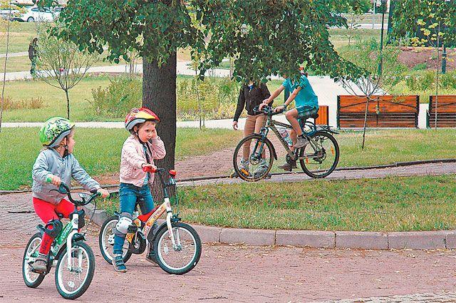 В парке создана сеть дорожек длявелосипедистов.