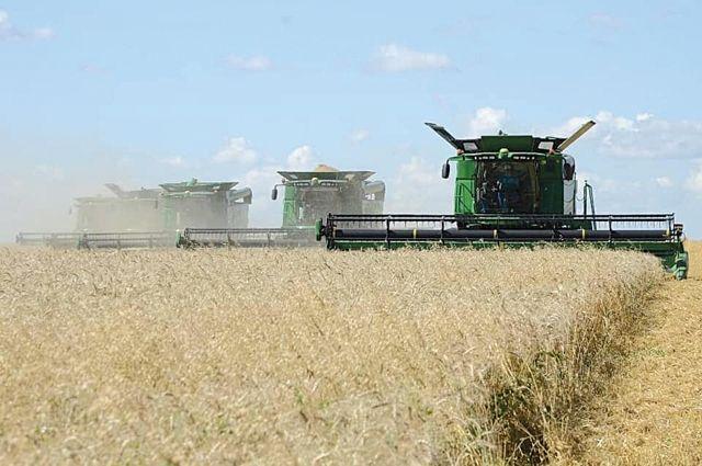 В прошлом году сибирские аграрии собрали 14,9 млн тонн.