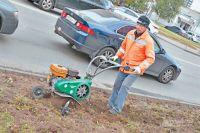 Благоустройство попрограмме  «Мой район»  не прекращается: сейчас  наул. Покрышкина обновляют газон.