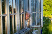 В Красноярском крае проживает 560 тыс. людей старше 60-ти лет.