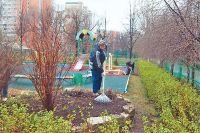 Благоустроенной икрасивой территорию вокруг школы № 2006 делают сами ученики.