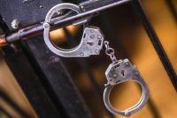 Мужчина по ходатайству следователей заключён под стражу.