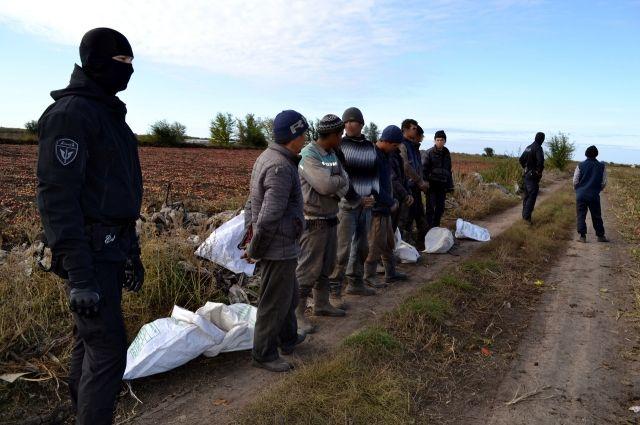 Около трассы Оренбург-Илек правоохранители обнаружили нелегальных мигрантов.
