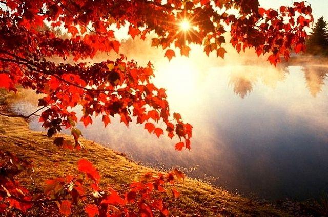 8 октября: какой праздник в Украине, церковный календарь, предписания дня
