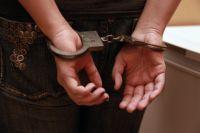 Преступники похищали деньги, ювелирные украшения, бытовую технику, телефоны, продукты питания.