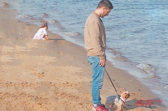 Где погулять с собакой? Управа Северного Тушина ответила на вопросы