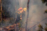 Люди часто неосторожно обращаются с огнем и нарушают правила пожарной безопасности в лесах во время отдыха, а также при очистке дачных и приусадебных участков от мусора и опавшей сухой листвы.