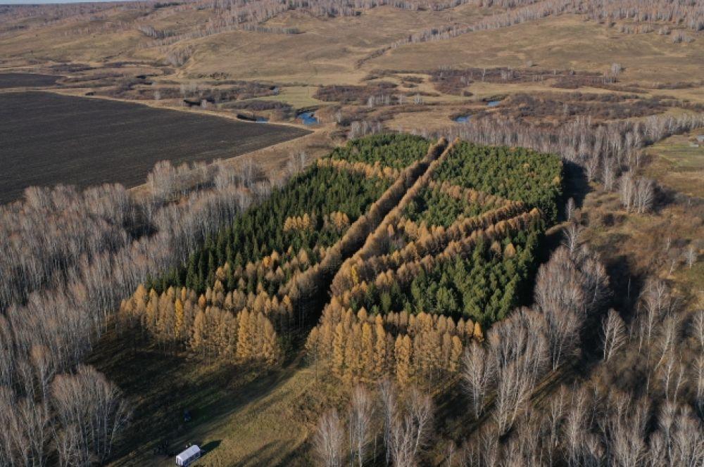 Лесопарк им. А.Леонова на территории 97 га. Есть в нём именные деревья, посаженные космонавтом и его семьей в 1976 г. В 1983 г. в парке были высажены 20 саженцев канадской ели. Они выращены из семян, побывавших в космосе в ходе совместного эксперимента во время полёта «Союз-Аполлон».