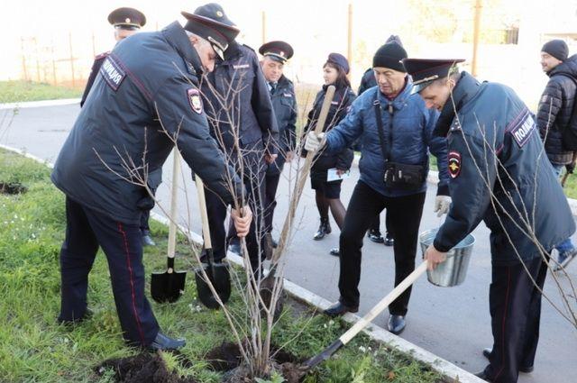 Акция «Лес Победы» направлена на сохранение памяти о 27 миллионах погибших в Великой Отечественной войне