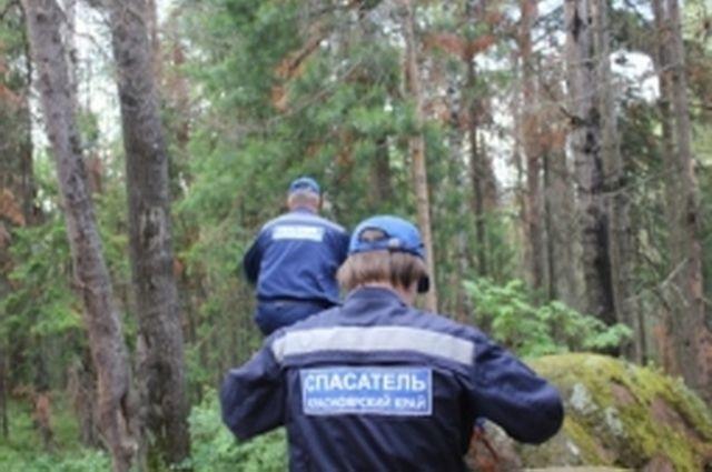 Чтобы найти мужчину, спасателям пришлось обследовать 35 км лесного массива