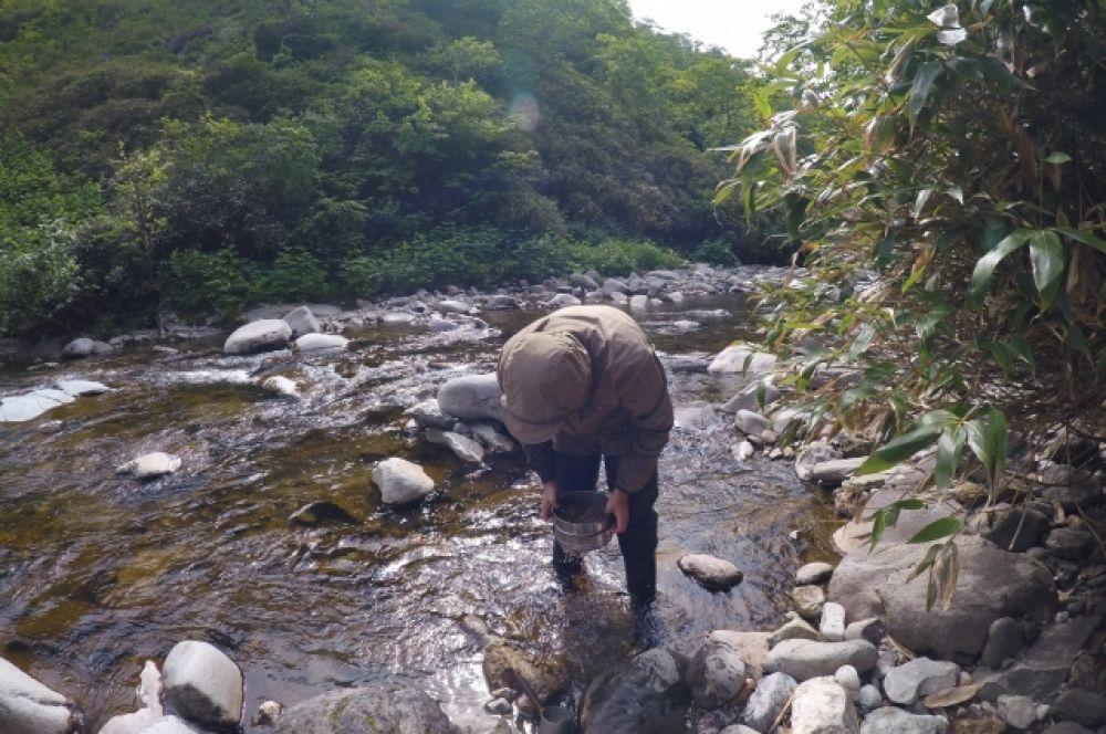 Основные поисковые маршруты проходили через ручьи