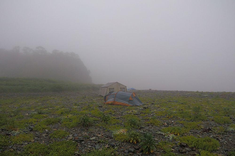 Туман - нередкое явление на острове