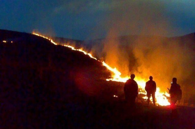Несуществующая работа сотрудников «Лесопожарного центра» была оплачена в размере 45 тыс. рублей