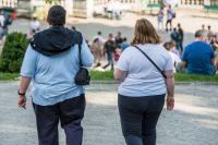 Какие гормоны сдают при ожирении: перечень анализов