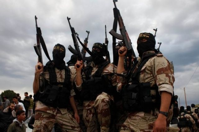 Габбард обвинила власти США в использовании «Аль-Каиды» в борьбе с Асадом