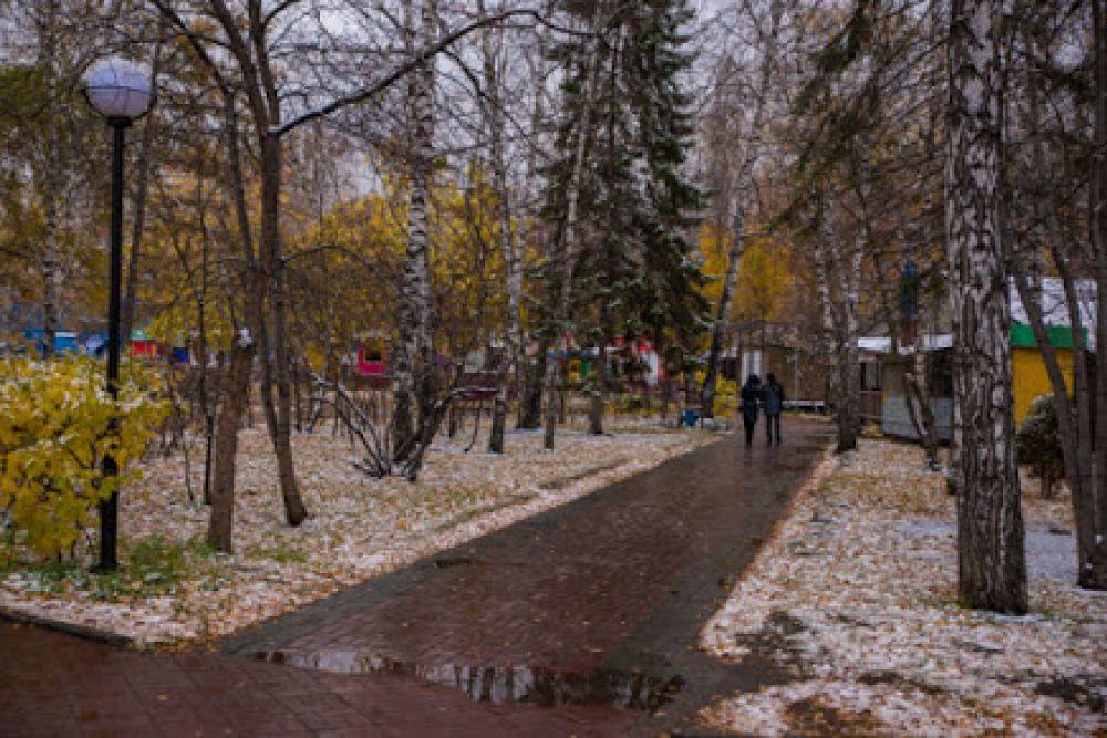 Аллеи парков города в снегопад стали выглядят еще романтичнее, а потому привлекают любителей прогуляться вдвоем.