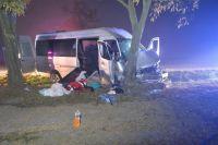 В Венгрии автобус врезался в дерево, 10 пострадавших, среди них - украинцы