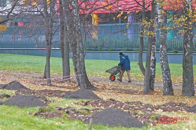 На газонах вдоль улиц листья должны сгребать, а вот в парках и скверах их убирать не надо.