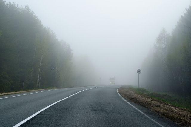 В Киеве предупреждают об опасности на дорогах из-за тумана: детали