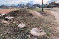 Около 10 лет назад спилили восемь тополей в парке. Исчезла берёзовая аллея рядом со школой.