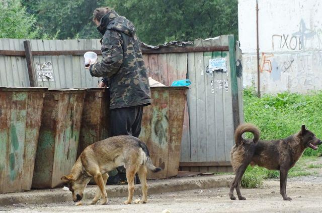 В Оренбурге бездомные разбили лагерь недалеко от детсада.
