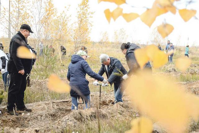 С помощью специального орудия – меча Колесова – глава региона делал лунки для посадки деревьев.
