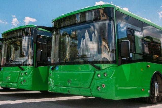 Тюменцам представят новые пассажирские автобусы
