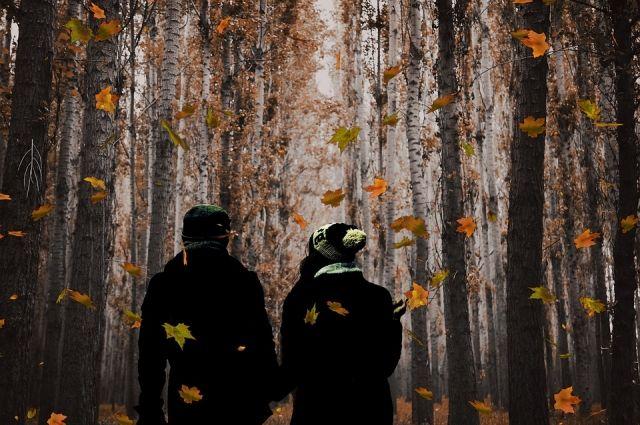 Прогулки по осеннему лесу особенно романтичны.
