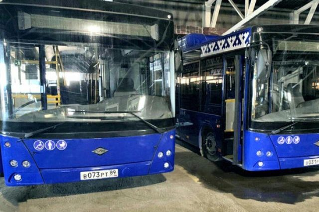 В Салехард завезли новые газомоторные автобусы