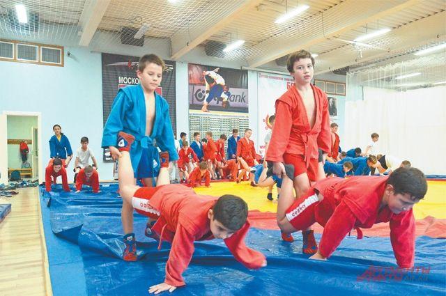 Самбо, дзюдо идаже экзотический ранее вид спорта– сумо… Родителям идетям есть изчего выбирать.