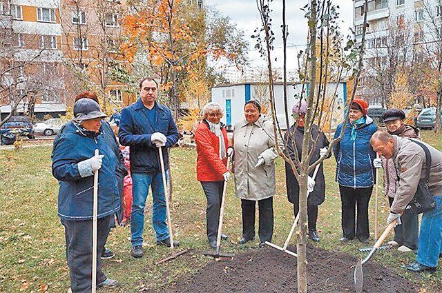 В посадке новых деревьев и кустарников принимают участие и сами жители района.