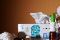 Более 8,5 тысяч жителей Удмуртии заболели ОРВИ на прошлой неделе