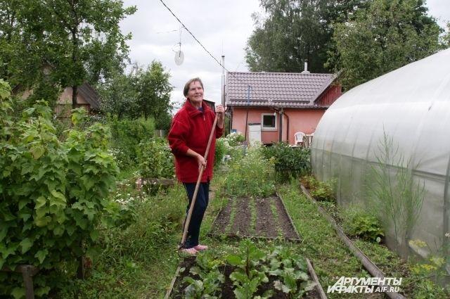 Жизнь у огородника нелёгкая. Только успевай уворачиваться от нововведений.