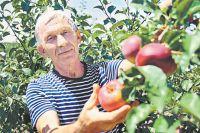 Равиль Нагуманов мечтает, чтобы сад развивался, а бизнес перешёл к следующим поколениям семьи.