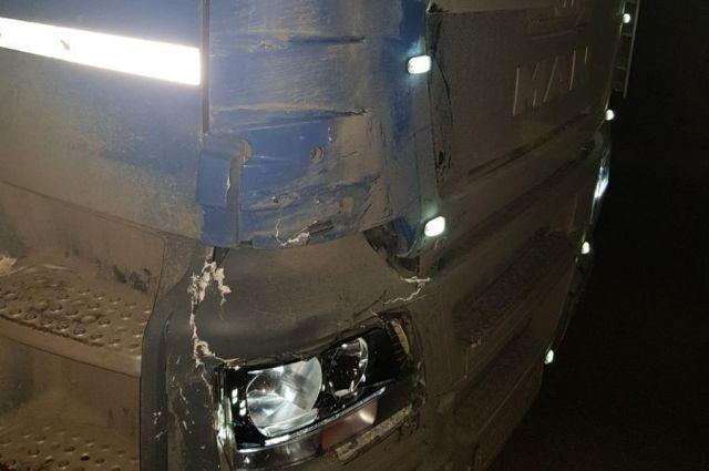 На трассе в Омутинском районе под колесами большегруза MAN погиб пешеход