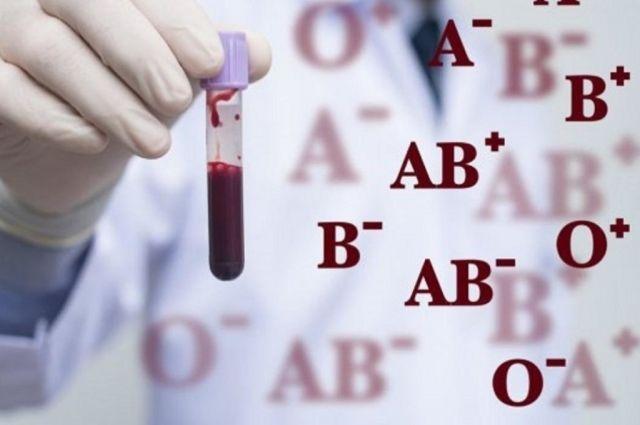 Группа крови вписывается в водительское удостоверение: нововведение МВД