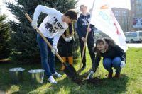 Участники акции высадили 60 деревьев.
