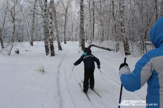 Прогулочные лыжи должны стать народным видом спорта.