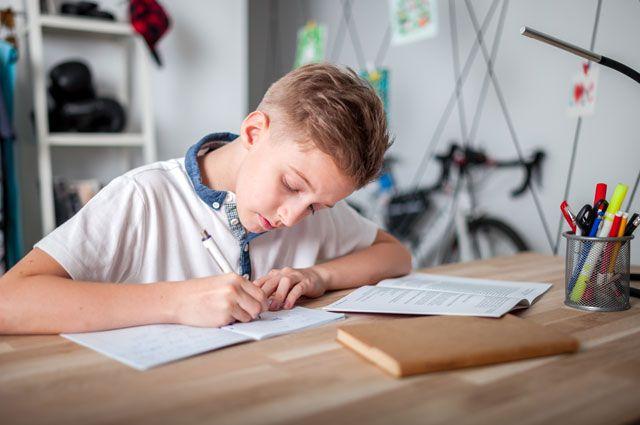 Почему стоит пользоваться готовыми домашними заданиями