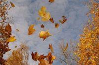 3 ноября: церковный праздник, именинники, приметы,что нельзя делать