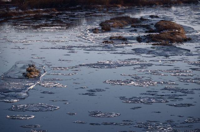 Первый лед на Туре представляет опасность для тюменцев
