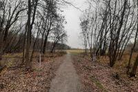 Строительство школы отнимет у Лесопарка почти три гектара земли…