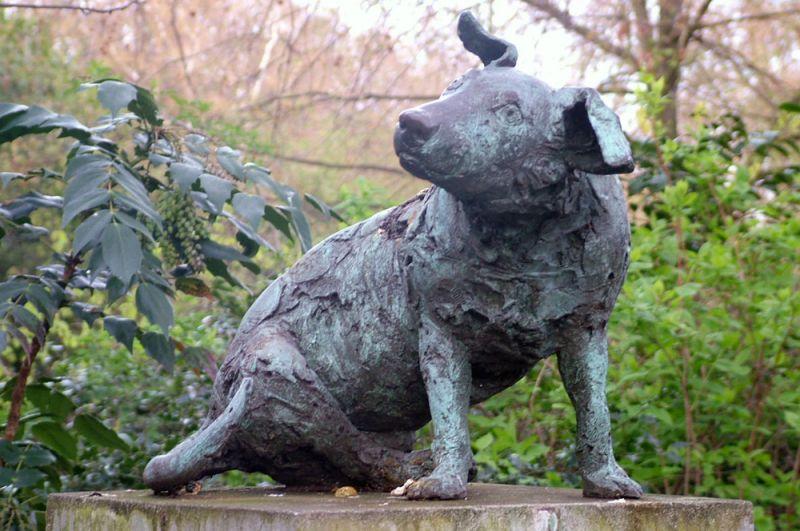 Памятник коричневой собаке, Лондон. В 1903 году профессор Уильям Бейлисс, провел перед аудиторией студентов вивисекционный опыт на собаке. По его словам она была надлежащим образом обезболена. Случился громкий скандал. В 1906 году сторонники запрета вивисекции возвели собаке памятник (в 1985 году его заменили на новый).