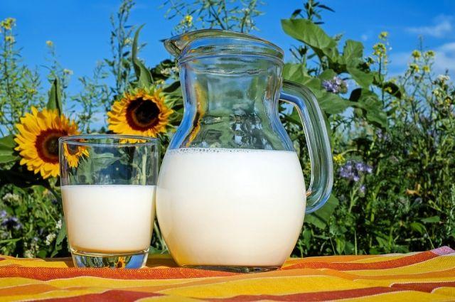 Комбинат «Роса» планирует наладить работу с местными производителями молока.