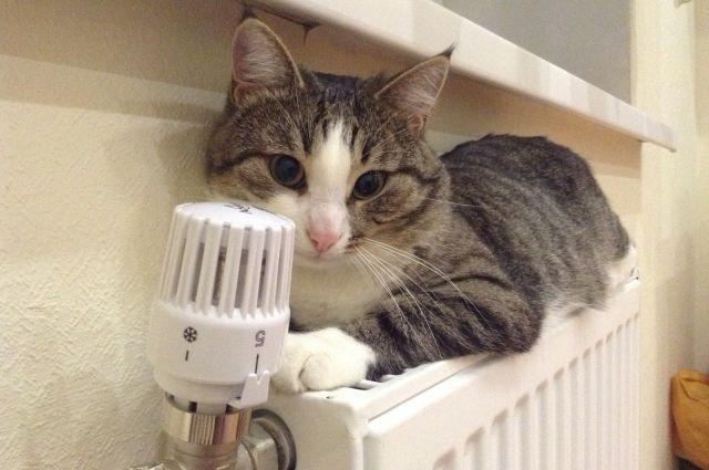 Отопительный сезон: в Украине получили тепло 89% жилых домов