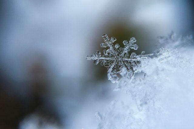 Только на северо-востоке, от Печоры до Воркуты, днём в воскресенье, 10 ноября, станет холоднее, чем накануне.