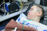У ребёнка переломы пяти рёбер, отбиты лёгкие и грудная клетка, изуродовано лицо, разорвана до кости нога, тело и голова покрыты многочисленными травмами и гематомами.