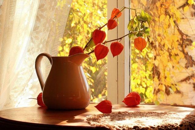 9 ноября: праздник Украины, церковный календарь, что нужно сделать женщинам